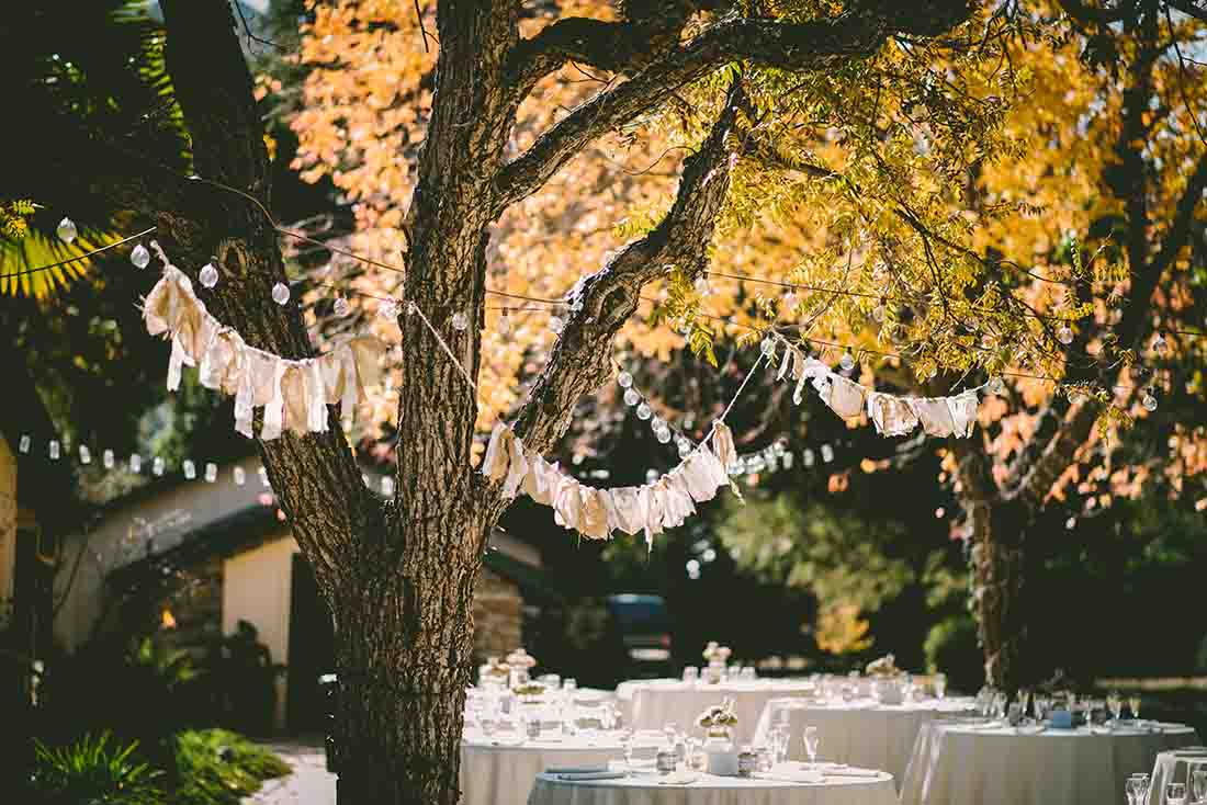 Trees with orange colored leaves decorated for a wedding
